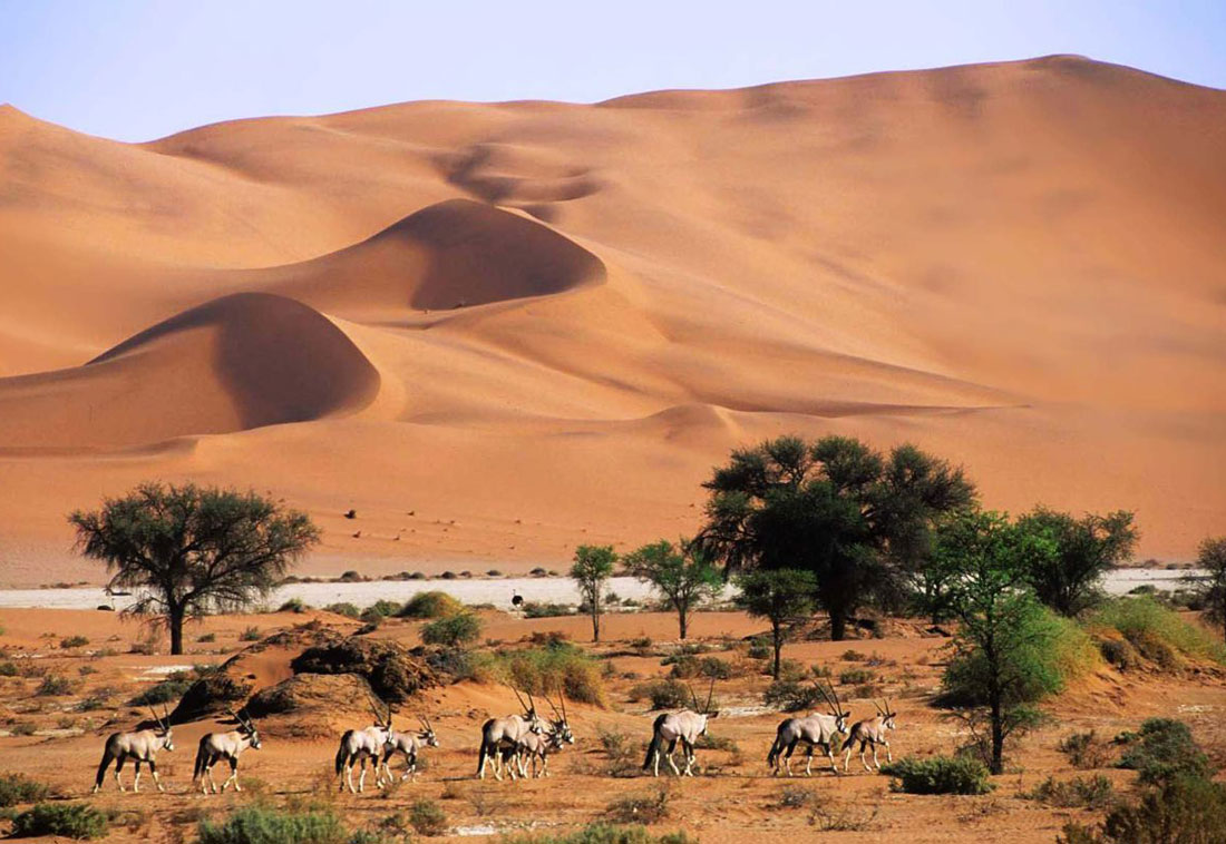 Voyage à Naminie